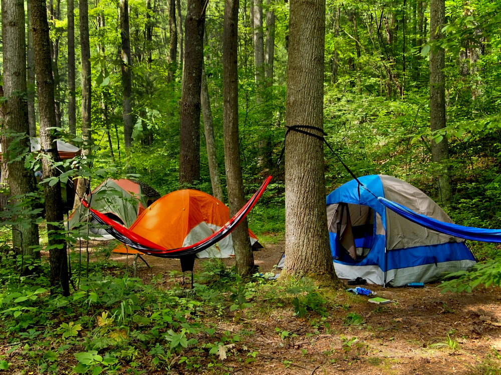 tents and a hammock